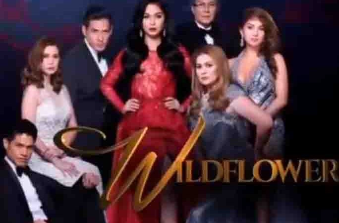 Maja Salvador thanks fans for supporting 'Wildflower'