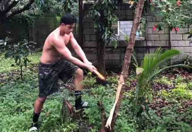 Diego Loyzaga hits back at netizen over his tree-cutting video