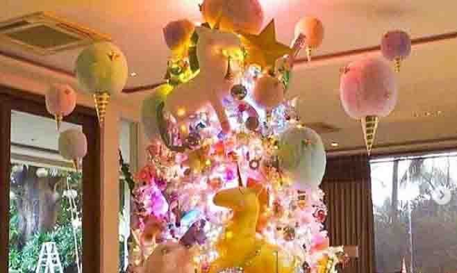 Guess who owns this beautiful Christmas Tree?