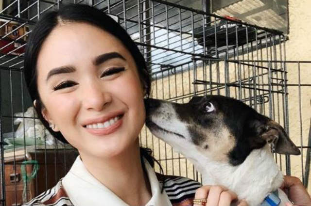 Heart Evangelista to build animal facility in Sorsogon